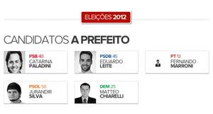 Candidatos à prefeitura de Pelotas (Foto: Arte G1)