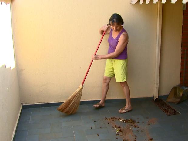 img1709141002 Moradora recolhe mais de 30 baratas por dia em residência de São Carlos Notícias