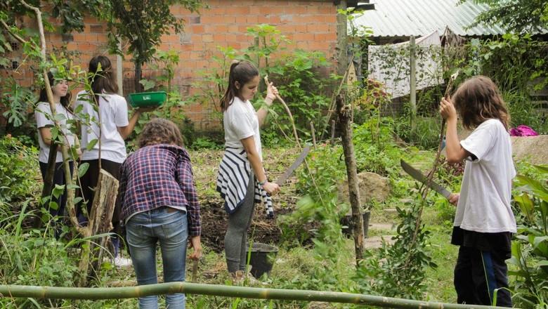 divulgacao-instituto-compassos-lush-premio (Foto: Divulgação)