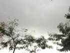 Inmet prevê trovoadas fortes e mais chuvas em MS na terça-feira