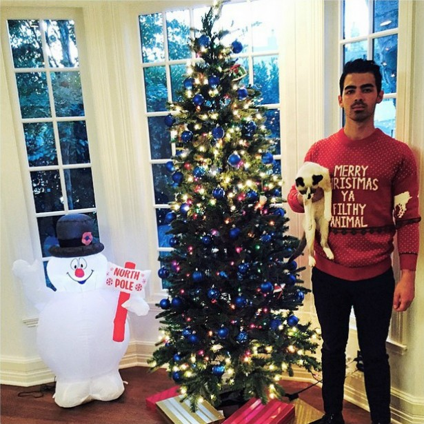 """Joe Jonas, ex-Jonas Brothers, não parece exatamente exultante de alegria com esse gatinho numa das mãos e o suéter dizendo """"Feliz Natal, seu animal sujo"""", referência ao filme 'Anjos de Cara Suja' (1938) também usada em 'Esqueceram de Mim' (1990). (Foto: Instagram)"""