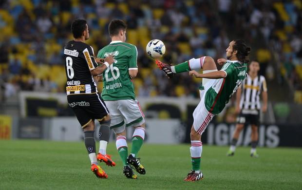 Valdivia, Botafogo x Palmeiras (Foto: André Durão / Globoesporte.com)