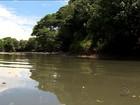 Nível de oxigênio é próximo de zero nas águas do Rio dos Sinos