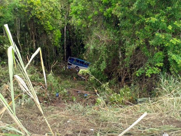 Acidente ocorreu no município de Caravelas, sul da Bahia (Foto: Viviane Moreira / Site O Povo News)