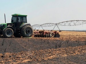 Fogo destrói área de fazenda em Barreiras (Foto: Ivan Rodrigo/Blog do Braga)
