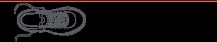 EuAtleta testamos header B_310px (Foto: Eu Atleta)