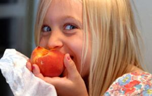 Dicas para a alimentação das crianças no verão