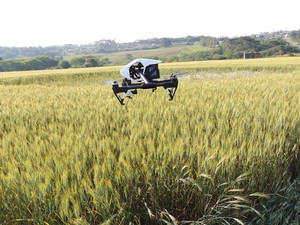 Imagens foram feitas com ajuda de drone (Foto: Revista UFO)