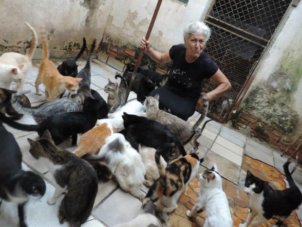 Aposentada dá ração a gatos que vivem nos fundos da casa (Foto: Caio Gomes Silveira/ G1)