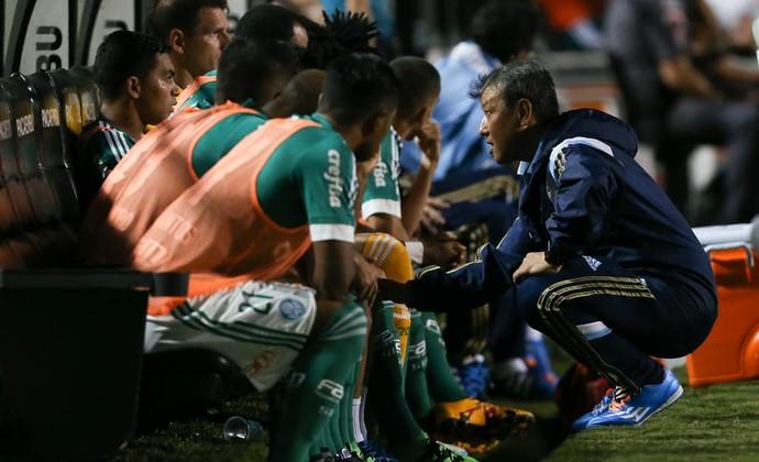 Fisioterapeuta Marcelo Gondo tenta tranquilizar Dudu no banco do Palmeiras (Foto: César Greco / Ag. Palmeiras / Divulgação)