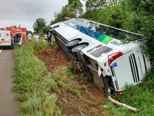 Ônibus tombou após tentativa de ultrapassagem na BR-153 (Foto: Divulgação/Corpo de Bombeiros)