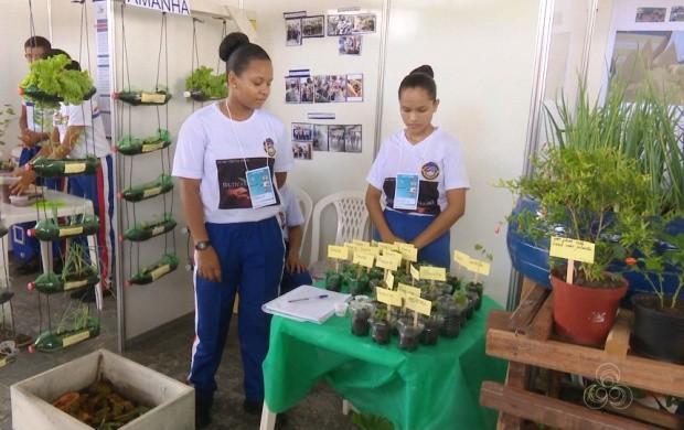 Feira de Ciências é realiza no parque Anauá, em Boa Vista (Foto: Roraima TV)