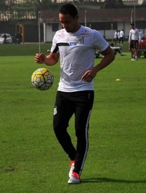 Ricardo Oliveira - Santos (Foto: Divulgação/Santos FC)