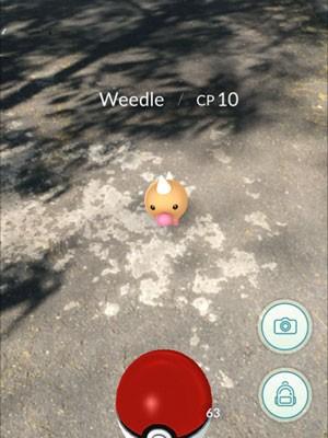 Pokémon Weedle apareceu ao lado de velório no Cemitério do Campo Grande (Foto: Reprodução/PokémonGo)