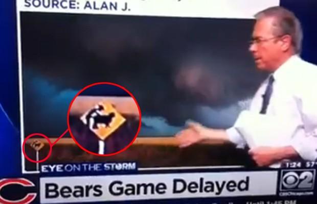 Emissora pediu fotos dos telespectadores e acabou exibindo imagem manipulada, que mostra placa de homem fazendo sexo com ovelha (Foto: Reprodução/YouTube/inyourfaces2011)