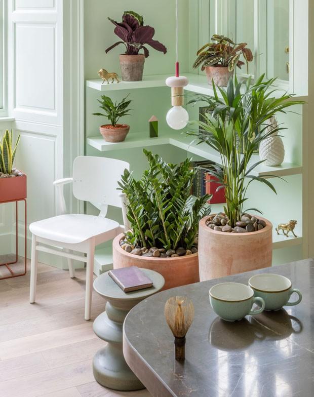 Décor do dia: canto de leitura verde-menta cheio de plantas (Foto: divulgação)
