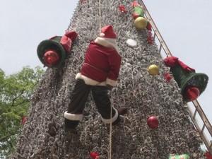 Foram usadas mais de 70 mil pinhas para construir a árvore (Foto: Reprodução/TVTEM)