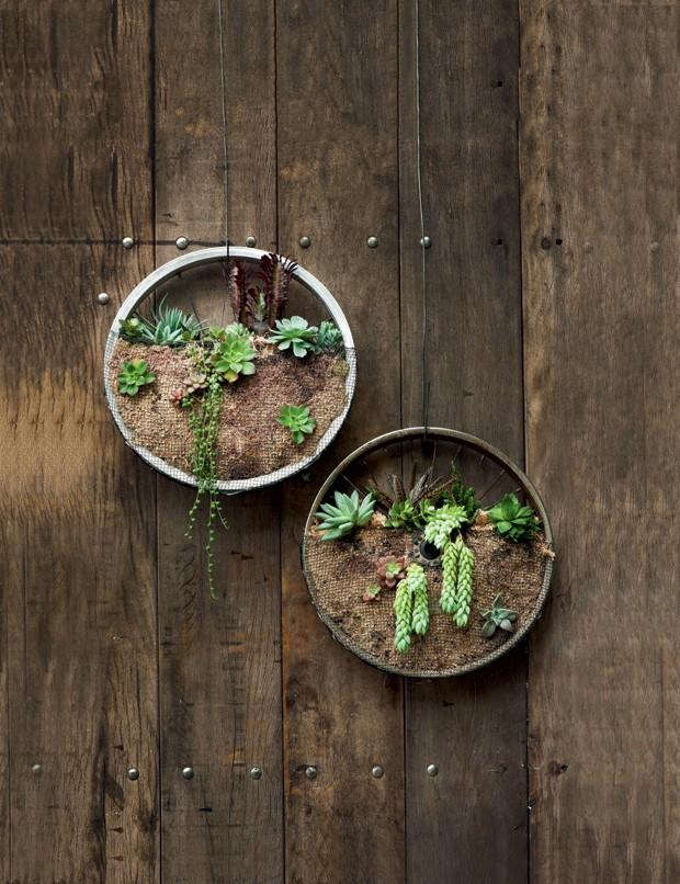 quadro verde; paisagismo; jardim;  (Foto: Iara Venanzi / Editora Globo)