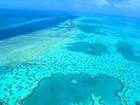 Grande Barreira de Corais está mais ameaçada do que se pensava
