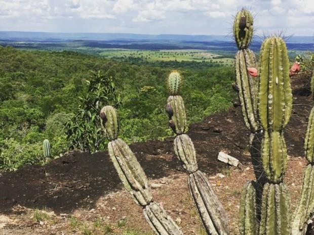 Monumento Natural Serra do Bom Jardim (Foto: Prefeitura de Alcinópolis/Divulgação)