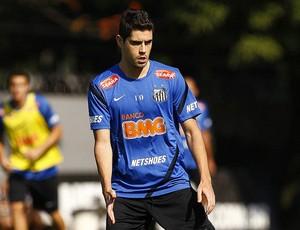 Miralles no Santos (Foto: Ivan Storti/Divulgação Santos FC)