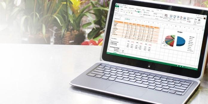 Microsoft Excel (Foto: Divulgação/Microsoft)