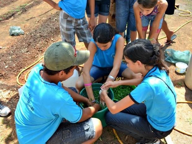 Projeto é desenvolvido por alunos do 1º ao 9º ano em escola de Cacoal (Foto: Fernanda Bonilha/G1)