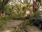 Após chuva, Exército e BM auxiliam na recuperação de Porto Alegre