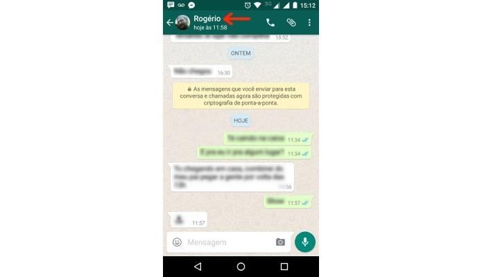 Destaque para nome do contato em conversa no WhatsApp (Foto: Reprodução/Raquel Freire)