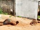 'Só fugiram os três recapturados' (Divulgação/PM)