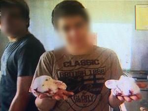 Estudante posa para foto e exibe cabeças de coelho durante aula em escola técnica (Foto: Reprodução/EPTV)