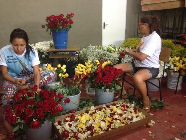 Resultado de imagem para Uma tonelada de flores chega de avião para o Círio de Nazaré
