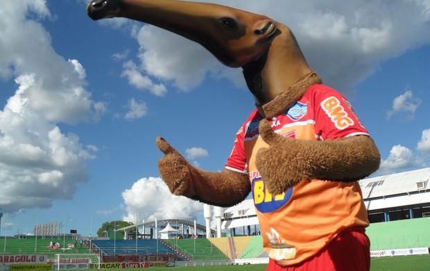 Mascote do Guarani-MG na Arena do Calçado em Nova Serrana, MG (Foto: Cleber Corrêa)