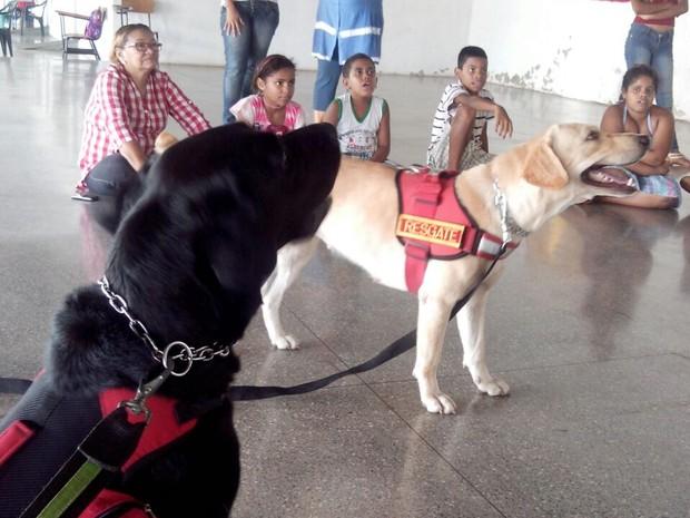 Cães ajudam no desenvolvimento de crianças. (Foto: Janisley Teodoro/ Corpo de Bombeiros-MT)
