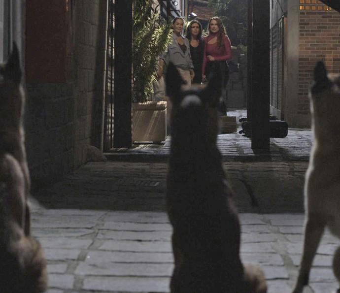As três ficam em pânico ao serem surpreendidas por cães (Foto: TV Globo)