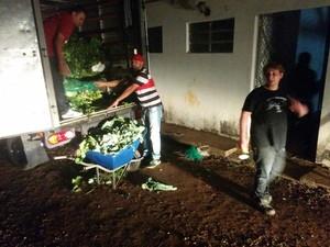 Santuário recebeu doação de alimentos (Foto:  Divulgação/Vista-se.com.br)