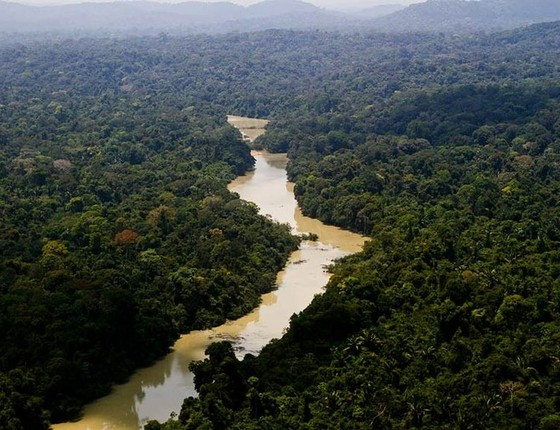 A Floresta Nacional do Jamanxim (Foto: Leonardo Milano/ICMBio)
