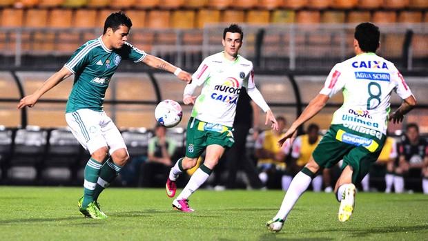 Palmeiras e Chapecoense (Foto: Marcos Ribolli)