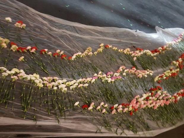 Estudante deu flores para todas as garotas de sua escola, em Utah, nos Estados Unidos (Foto: Hayden Godfrey / Facebook)
