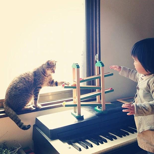 Menina japonesa e seu gato de estimação (Foto: Reprodução / Instagram @makicocomo)