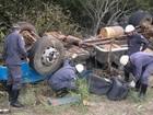 Homem morre soterrado por carga de carvão vegetal no Norte de MG