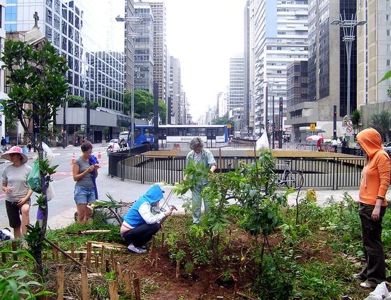 Mutirão para montar uma horta na avenida Paulista (Foto: Luiz Campos - Wikimedia Commons)