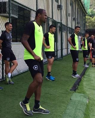 Airton, Botafogo (Foto: Divulgação / Botafogo)