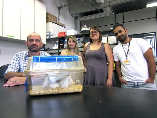 Jean Pierre Peron (esq.) com sua equipe e camundongos usados em experimento com o zika (Foto: Rafael Garcia/G1)