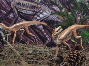 Pesquisadores compararam Ixalerpeton polesinensis a uma pequena ave (Foto: Reprodução/RBS TV)
