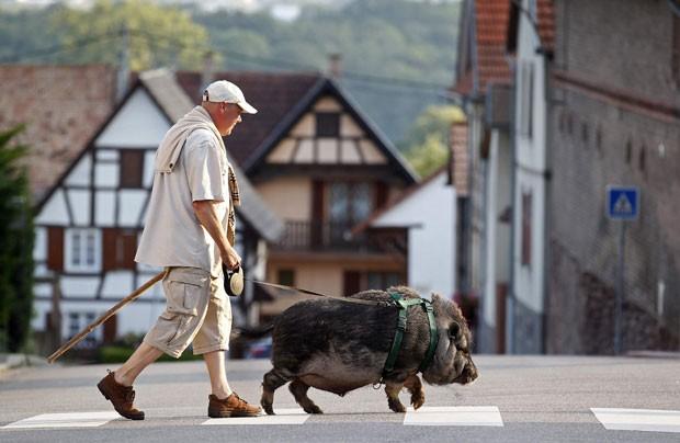 Christophe Lutz foi fotografado passeando com javali de estimação. (Foto: Vincent Kessler/Reuters)
