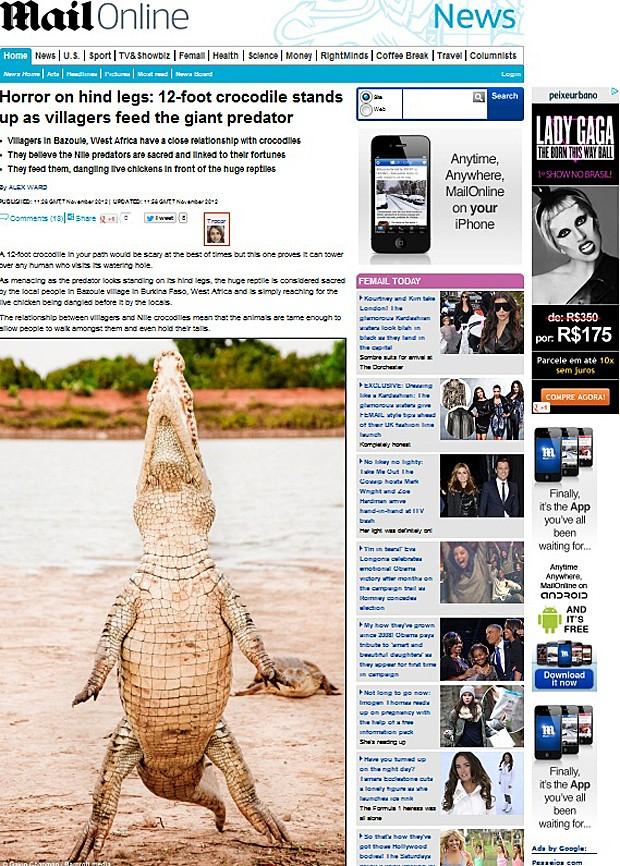 Crocodilo (Foto: Daily Mail/Reprodução)
