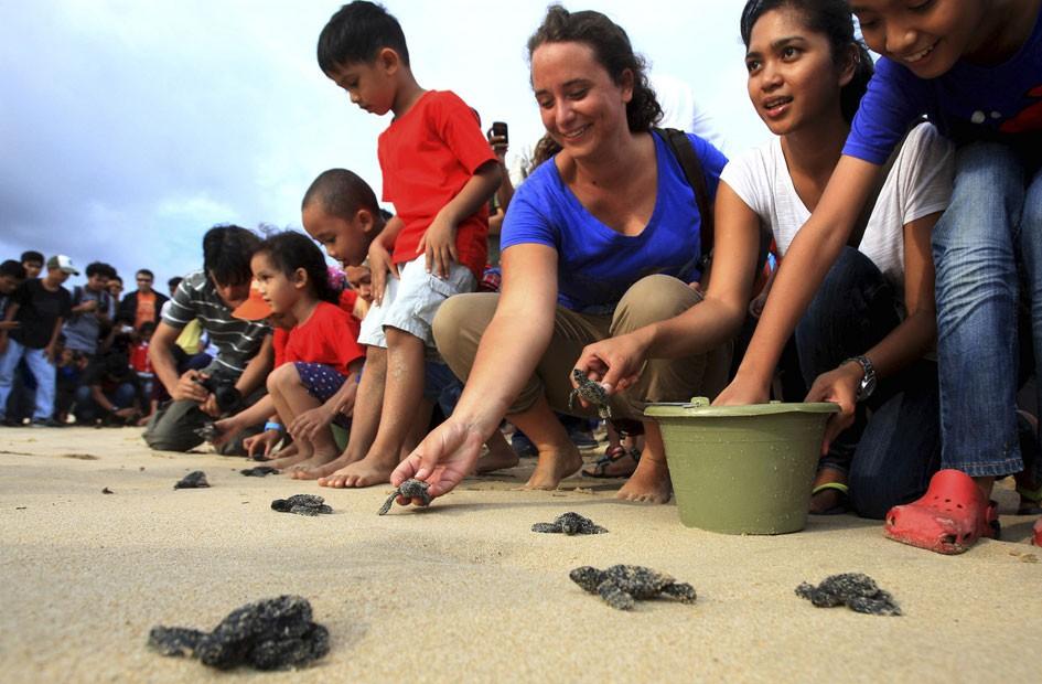 Várias espécies de tartarugas-marinhas são atualmente consideradas ameaçadas de extinção (Foto: Heri Juanda/AP)