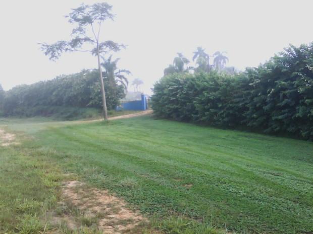 Acidente ocorreu durante trabalho de roçagem em uma fazenda na zona rural de São Miguel Arcanjo (Foto: Cláudio Nascimento / TV TEM)