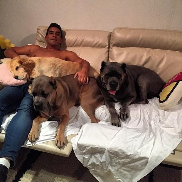 André Marques com seus cachorros (Foto: Instagram/ Reprodução)